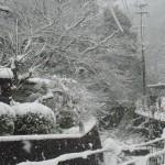 大雪と在宅